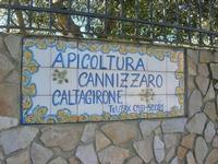 visita all'Apicoltura Cannizzaro - insegna in maiolica - 5 dicembre 2010  - Grammichele (2732 clic)