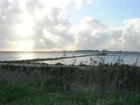 Saline Infersa - 7 novembre 2010  - Marsala (1131 clic)