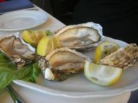 ostriche - la Cambusa - 21 febbraio 2010   - Castellammare del golfo (3450 clic)