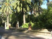 Villa Patti - sedile in pietra nel giardino - 5 dicembre 2010  - Caltagirone (2120 clic)