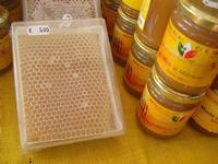 visita all'Apicoltura Cannizzaro - prodotti biologici - 5 dicembre 2010  - Grammichele (3157 clic)