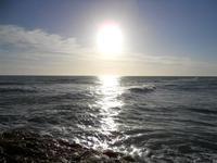 riflessi di sole sul mare - 6 gennaio 2010   - Marinella di selinunte (4524 clic)