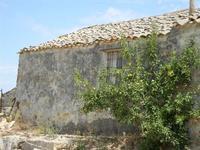 BAGLIO NOVO - casa rurale e melo - 15 agosto 2011  - Fulgatore (865 clic)