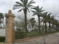 Kempinski Hotel Giardino di Costanza - cancello e viale con palme - 20 febbraio 2011  - Mazara del vallo (1340 clic)