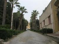 Villa Betania - 27 febbraio 2011  - Valderice (2391 clic)