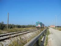ferrovia a binario semplice parallela alla strada - passa un treno - 13 novembre 2011  - Marausa (1736 clic)