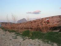 Tonnara - barca e Monte Cofano - 14 marzo 2010   - Bonagia (2646 clic)