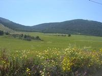 la campagna a primavera - Montagna Grande - 1 maggio 2010  - Fulgatore (2853 clic)