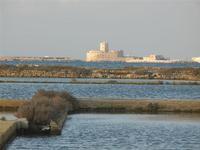 La Colombaia di Trapani vista dalle saline - 13 novembre 2011  - Nubia (600 clic)