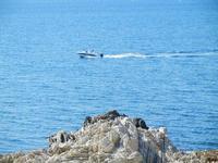 vista sul mare - 8 maggio 2011 TERRASINI LIDIA NAVARRA