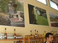 visita all'Apicoltura Cannizzaro - prodotti biologici - illustrazione della lavorazione del miele - 5 dicembre 2010  - Grammichele (2308 clic)