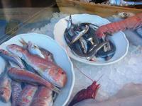 pesci in vetrina - La Cambusa - 21 febbraio 2010   - Castellammare del golfo (3146 clic)