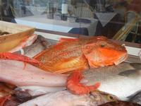 pesci in vetrina - La Cambusa - 2 novembre 2011  - Castellammare del golfo (779 clic)
