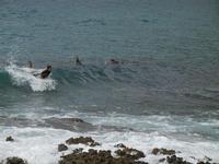 surf - 12 giugno 2011  - Cornino (1501 clic)