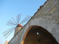 Museo del Sale e mulino a vento - particolare - 13 novembre 2011  - Nubia (622 clic)
