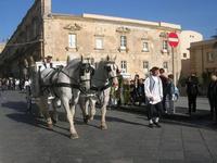 Infiorata 2010 - Corteo Barocco - 16 maggio 2010  - Noto (4432 clic)