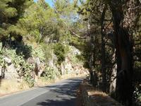 Riserva Naturale Orientata Monte Pellegrino - lungo la strada - 8 agosto 2011 PALERMO LIDIA NAVARRA