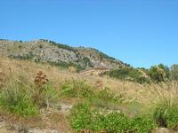 Tempio - 1 agosto 2010  - Segesta (2821 clic)