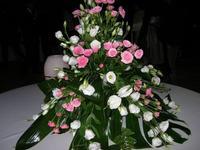 composizione di rose - Parco Elimi - 26 giugno 2010  - Segesta (2244 clic)