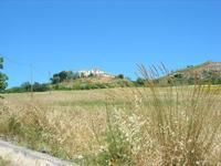 Castello di Rampinzeri - 6 giugno 2010  - Santa ninfa (1463 clic)