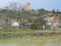 Baia di Guidaloca - fiume e torre di avvistamento - 6 gennaio 2012  - Castellammare del golfo (592 clic)