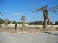 Via Curatolo - palme sul lungomare distrutte dal punteruolo rosso - 13 novembre 2011  - Marausa lido (876 clic)