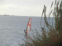 windsurf allo Stagnone - 20 novembre 2011  - Marsala (1256 clic)