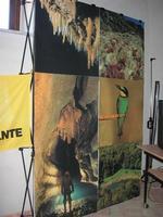 Castello di Rampinzeri - Sede LEGAMBIENTE - 6 giugno 2010  - Santa ninfa (1809 clic)