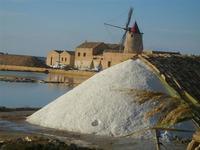 Saline Ettore Infersa - mulino a vento - 20 novembre 2011  - Marsala (494 clic)