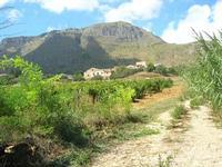 paesaggio rurale - 12 settembre 2010  - Castellammare del golfo (1254 clic)
