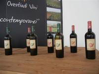 Azienda Orestiade Vini - esposizione - 31 agosto 2011  - Gibellina (1244 clic)
