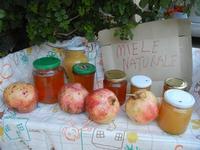 miele e melagrane - 1 ottobre 2011  - Scopello (1168 clic)