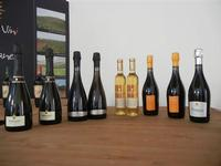 Azienda Orestiade Vini - esposizione - 31 agosto 2011  - Gibellina (1264 clic)