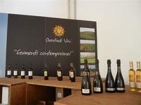 Azienda Orestiade Vini - esposizione - 31 agosto 2011  - Gibellina (1272 clic)