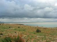 Golfo di Bonagia - 14 febbraio 2010   - Cornino (2054 clic)