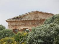 Tempio - 23 maggio 2011  - Segesta (1591 clic)