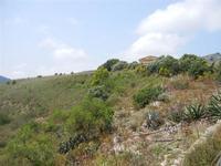 zona archeologica e Tempio - 23 maggio 2011  - Segesta (1563 clic)