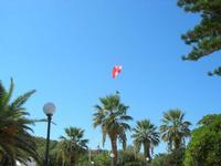 deltaplano sulla spiaggia - 5 settembre 2010  - San vito lo capo (2643 clic)