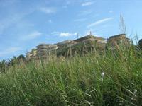 Zona Plaja - case sulla collina - 15 febbraio 2010   - Alcamo marina (2655 clic)