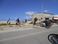 C/da Magazzinazzi - stazione ferroviaria di C/mare del Golfo - passeggiata a cavallo - 27 marzo 2010  - Alcamo marina (2270 clic)