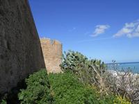 al Castello - 21 febbraio 2010   - Castellammare del golfo (1505 clic)