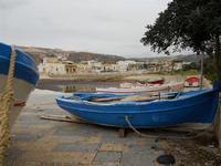 barche in secca: il porticciolo è invaso dalle alghe - 17 gennaio 2010   - Cornino (2085 clic)