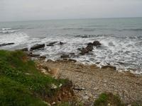 la costa dalla via Niso - 17 gennaio 2010   - Pizzolungo (4543 clic)