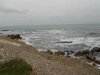 la costa dalla via Niso - 17 gennaio 2010   - Pizzolungo (4954 clic)