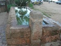 all'ingresso della Riserva dello Zingaro - fontana - 14 novembre 2010  - Riserva dello zingaro (1393 clic)
