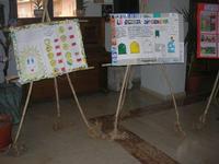 Progetto PON - I.C. G. Pascoli - 5 maggio 2010  - Castellammare del golfo (1957 clic)