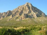 Monte Cofano - 14 marzo 2010  - Cornino (2140 clic)