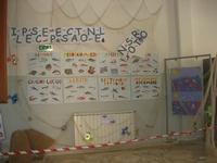 Progetto PON - I.C. G. Pascoli - 5 maggio 2010  - Castellammare del golfo (2357 clic)