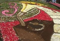 Infiorata 2010 - Bozzetti ispirati al tema: Musica dipinta: le forme e i colori della musica - RADEYZKY IN SOUND - particolare - Via Nicolaci - 16 maggio 2010  - Noto (2437 clic)