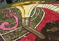 Infiorata 2010 - Bozzetti ispirati al tema: Musica dipinta: le forme e i colori della musica - RADEYZKY IN SOUND - particolare - Via Nicolaci - 16 maggio 2010  - Noto (2375 clic)